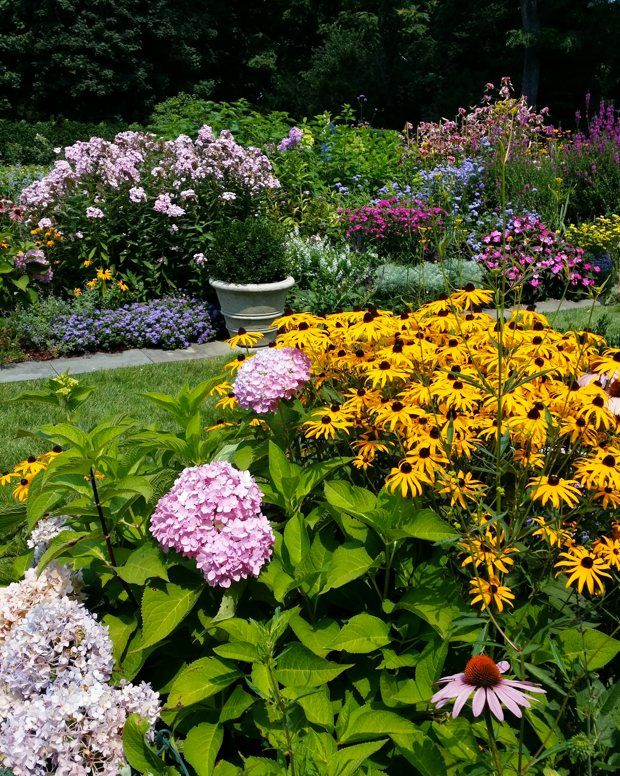 80 best cottage gardens images on pinterest cottage for Easy care flowers for garden