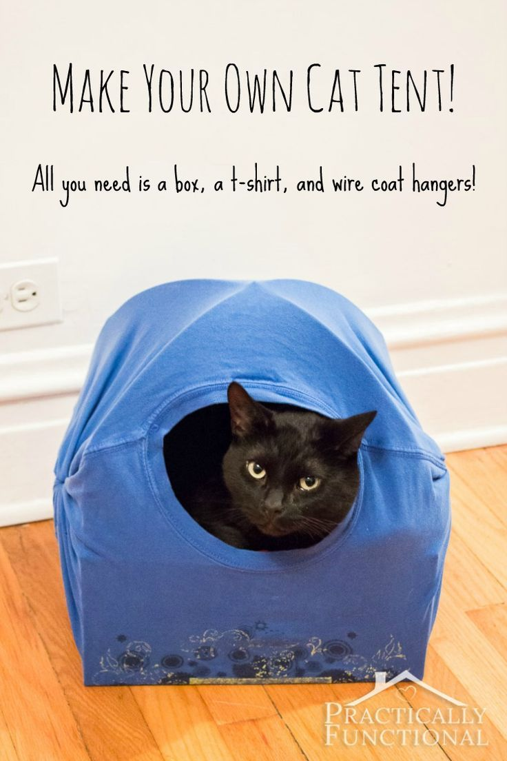 Baby jasper bed brackets - Diy Cat Tent Bed