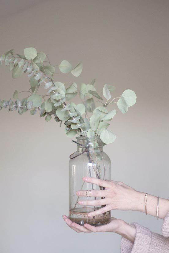Eucalyptus   I Want That