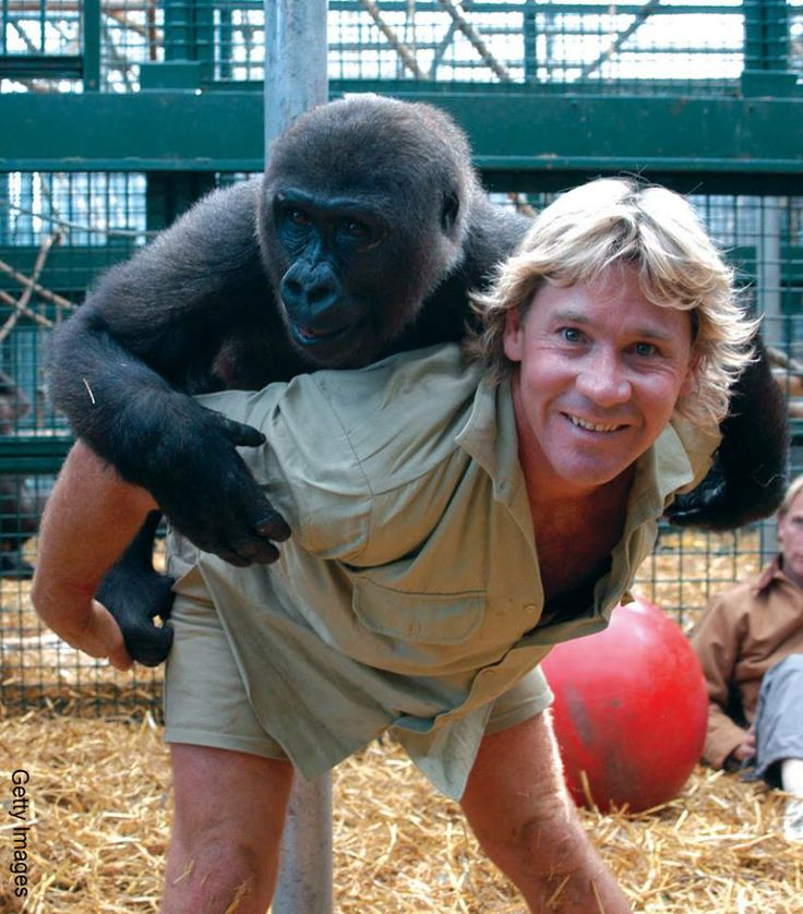 Steve Irwin would have been 52 on the 22nd Feb 2014..... Miss you Steve!!