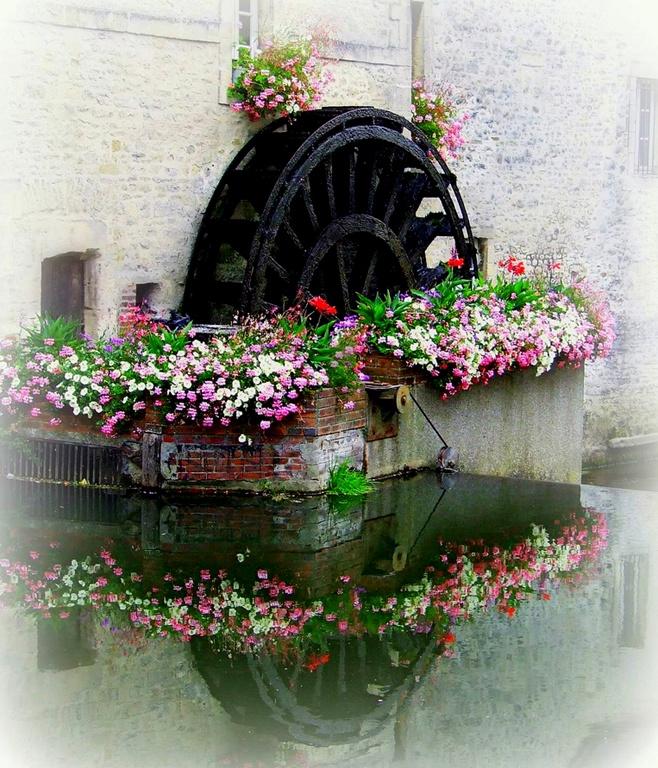 water wheel garden