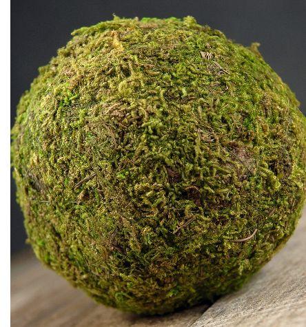 "4"" Natural Moss Covered Balls $3.99 each / 3 for $3  each: Moss Covers, Preserves Moss, Nature Preserves, Nature Moss, 1 70 Each Mixed, Moss Ball Cheap, Moss Balls Cheap, Covers Ball, Crafts"