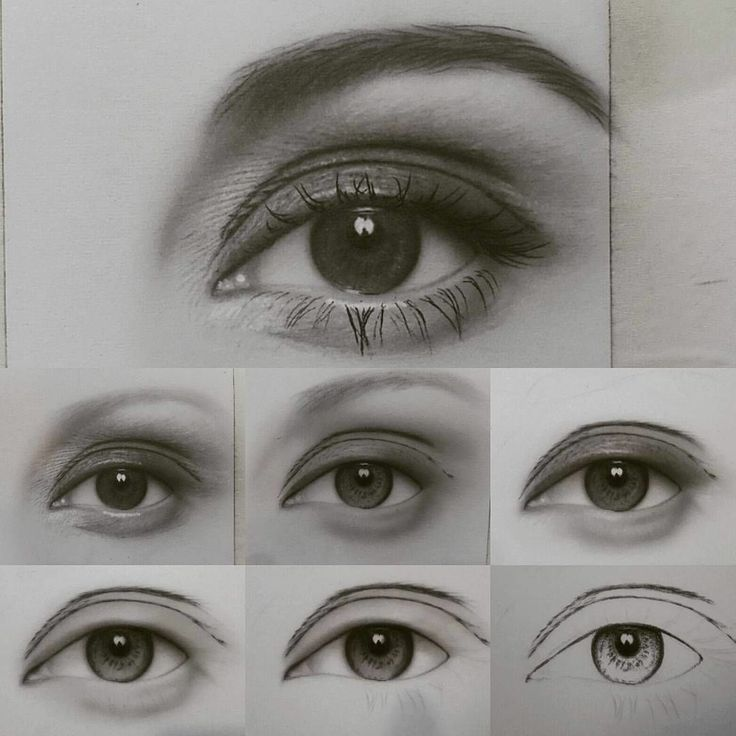 Step By Step Eye Draws Pencil Drawing Realistic And Color In