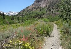 43 Hidden Hikes to Try This Summer
