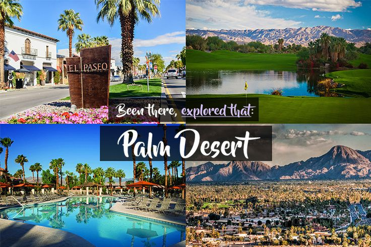ESSENTIAL Palm Desert List | What to do in Palm Desert |  Things to do in Palm Desert | Palm Desert Guide | Palm Desert Attractions | Must See Palm Desert | Palm Springs |Where to Shop in Palm Desert | Golf Palm Desert