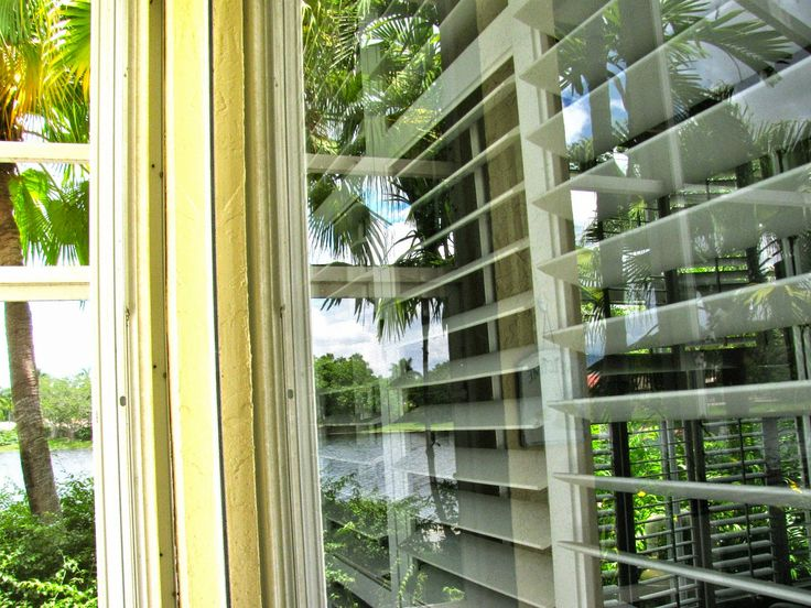 MAY DAYS: DIY Outside Window Wash  Window Washer Solution--  just air dry.