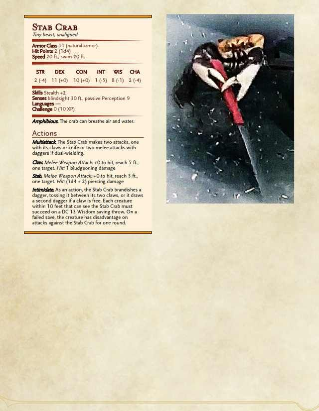 5e][Subclass] Paladin Order: Order of Holy Water | Homebrew