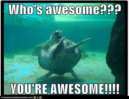 You Re Awesome Funny Memes : Who s awesome you re