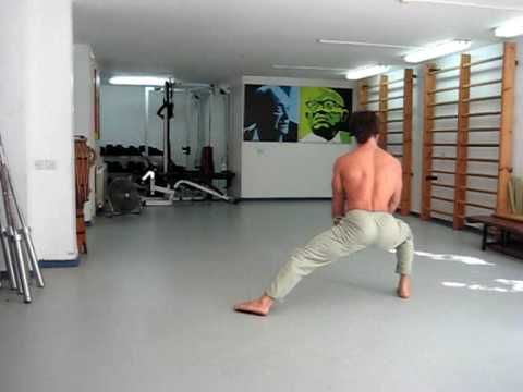 locomotion conditioning routine advanced - courtesy ido portal