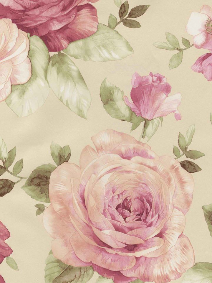 rose and vine wallpaper - photo #32