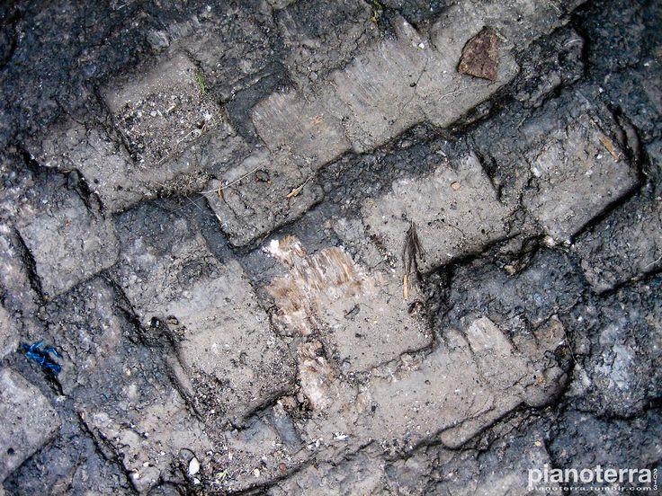 Standprints on the asphalt. Milano.