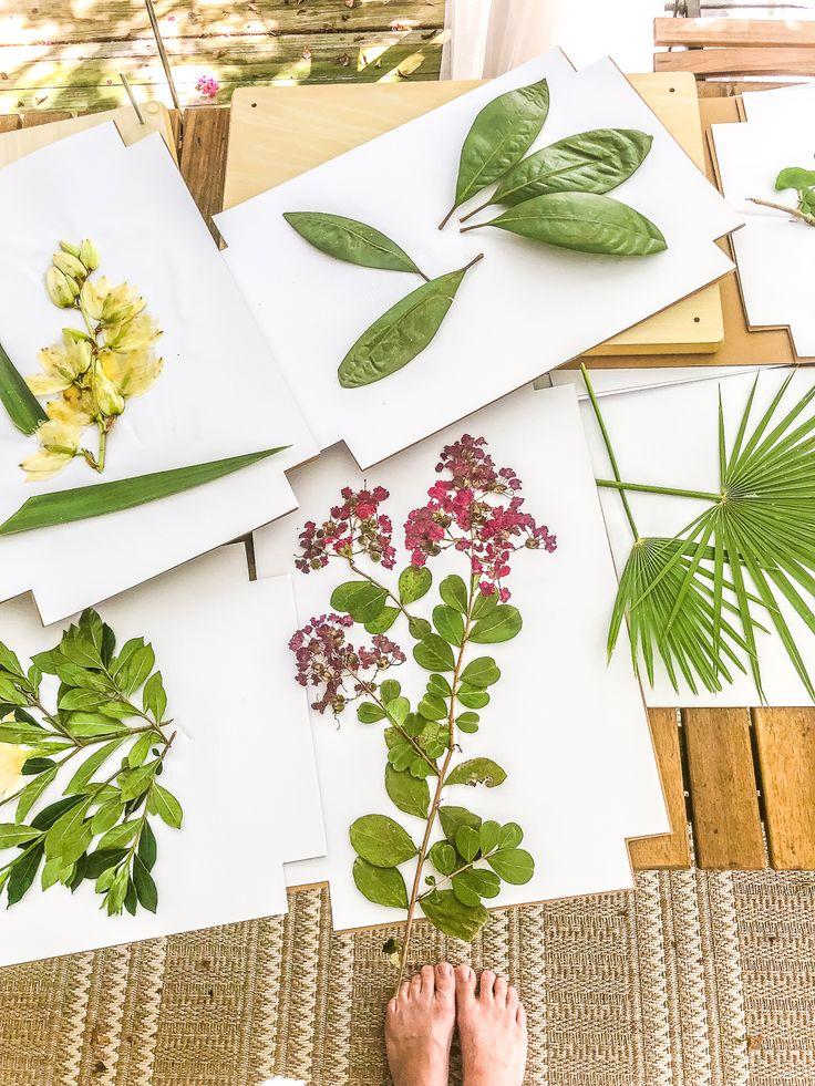DIY Pressed Flower Art Pressed flower art, Painting