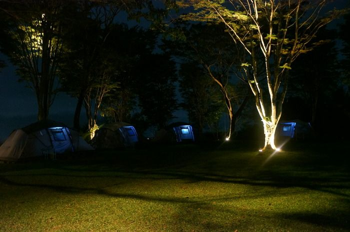 Nighty night: The lights from inside the tents are making a gorgeous sight during night-time at Tanakita camping ground. (Photo by Icha Rahmanti)