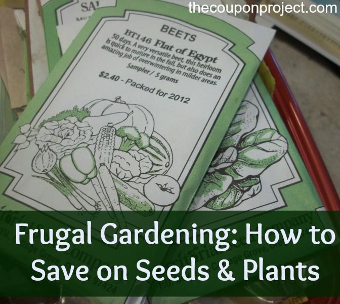 28 best images about gardening on balcony on pinterest gardens vegetable garden and herbs garden - Money saving tips in gardening ...