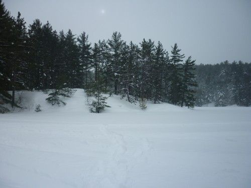 A great spot for snowshoeing in French River!