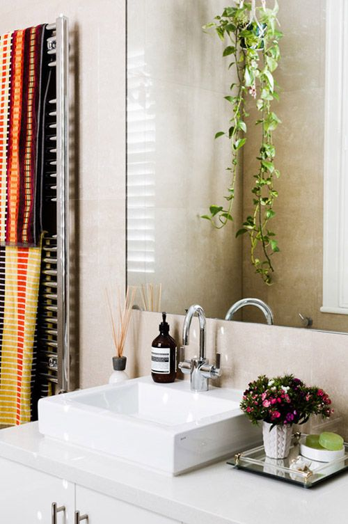 Cool Bathroom Plants 134 best :: bathroom :: images on pinterest | room, bathroom ideas
