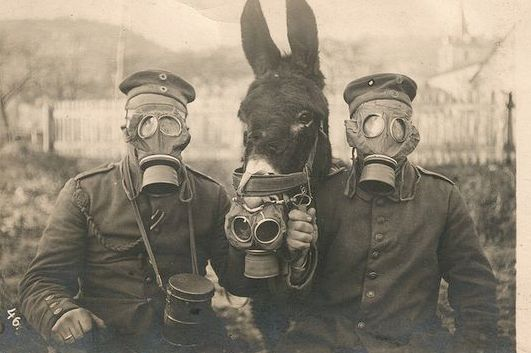Post image for The GM-15 (Gummimaske) 1916. Germany's First WWI Gas Mask.