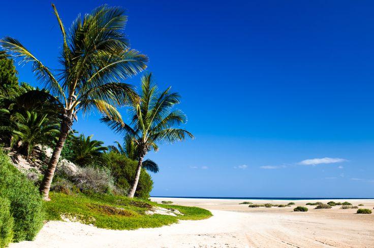 Playa Corralejo,  Fuerteventura.