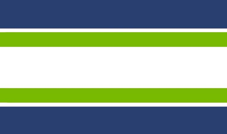 Seattle Seahawks NFL Team Color Wallpaper Border boys
