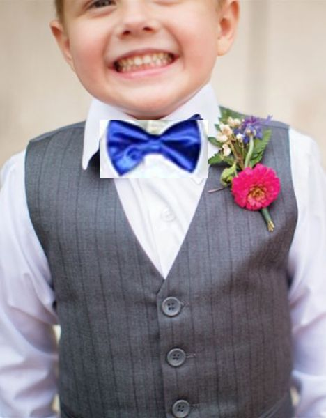 The 25+ best Royal blue bow tie ideas on Pinterest