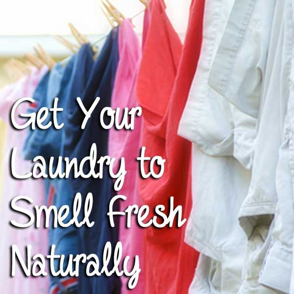 Get Your Laundry to Smell Fresh Naturally: BrownThumbMama.com