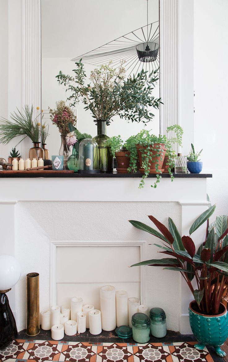 The plants, the fireplace, the tile — obsessed!