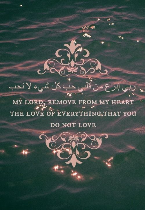 #My_Lord #Allah #Love  ·٠• fb.com/Quran.And.Ahades •٠·