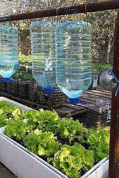 Watering idea