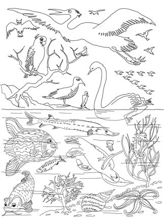 Day Of Creation Coloring Page From Story Category Select 27278 Printable Crafts Cartoons Nature Animals Bible And Many More