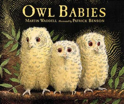 Owl Babies: Our theme was owls and our early literacy skill was Print Awareness (3/18/14)