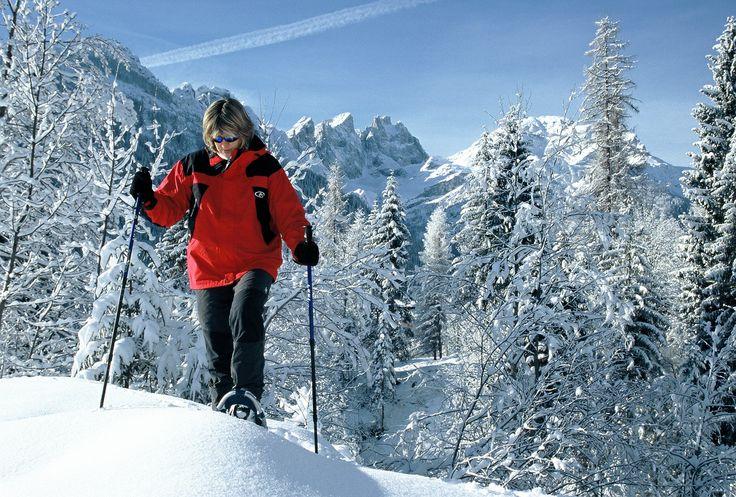 Snow Shoes / Racchette da Neve #Falcade #PassoSanPellegrino #dolomitistars
