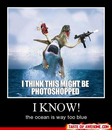 ...and dynamite doesn't light when wet...duh. needs to be more realistic...: Real Life, Funny Pics, Jurassic Park, The Ocean, Hilarious Pictures, Funny Stuff, Funny Photo, Sharks Week, So Funny