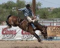 Prescott Rodeo, 4th of July weekend