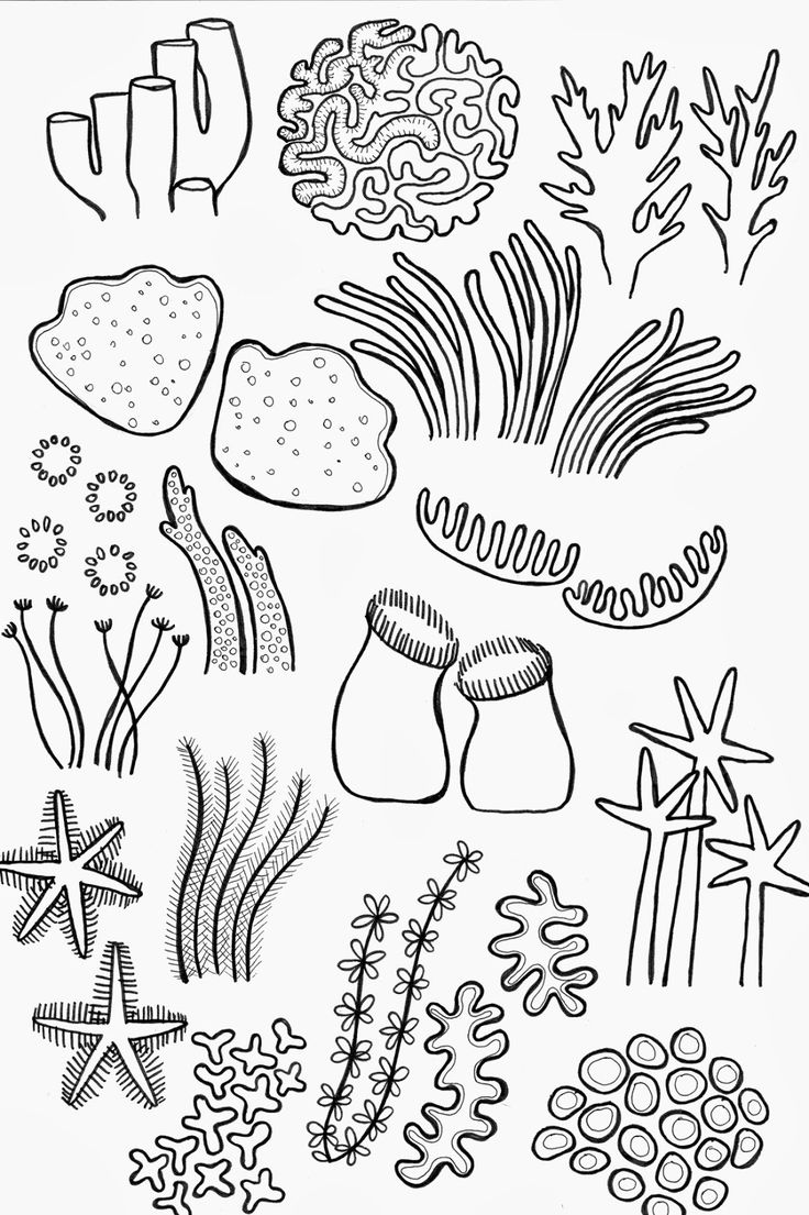 Drawing Underwater Coral Reef Sketch Coloring Page (With