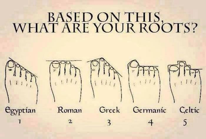 A study claims you can tell your heritage from the shape of your feet, so take a look and discover where your family originally came from.