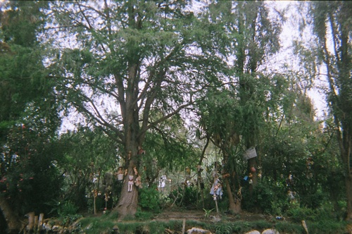 Isla de Las Munecas: Mexico's Island of the Dolls