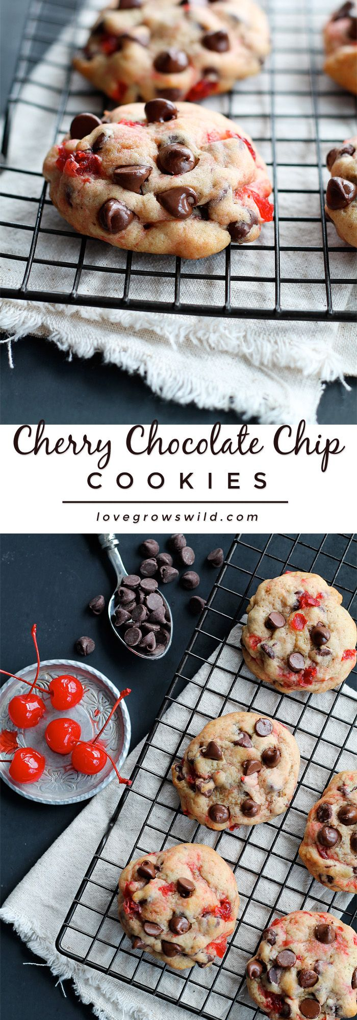 The perfect recipe for big, chewy chocolate chip cookies filled with sweet bites of maraschino cherries and plenty of chocolate. Tastes just like a chocolate-covered cherry in cookie form!   LoveGrowsWild.com