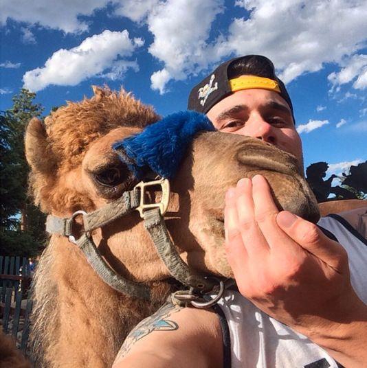 » Селфи с верблюдами Это интересно!