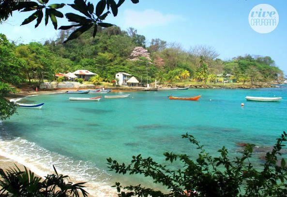 El mar transparente y coralino de Bahía Aguacate Capurganá te espera.