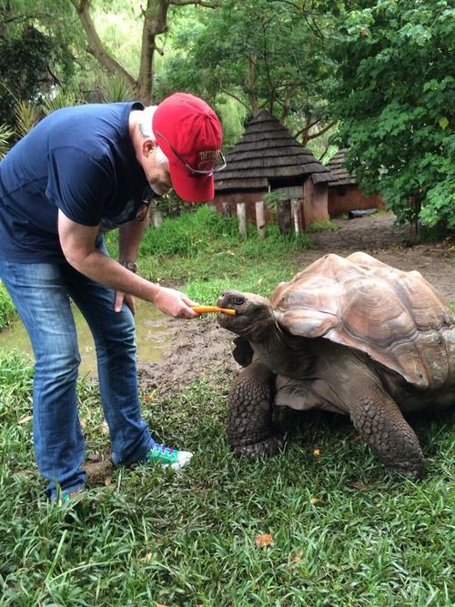 Rob Paulsen voice of Donnie, feeding a turtle :D