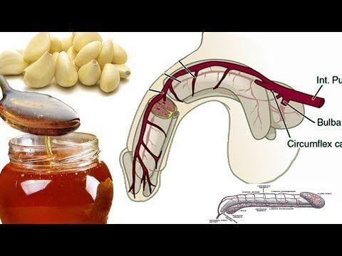 Why Garlic and Honey Good for Men? Garlic Health Benefits   Raw Honey Benefits - YouTube
