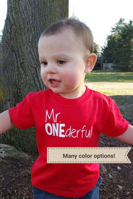 When it comes to celebrating a 1st birthday, a plain ol shirt will never do! If your soon-to-be one year old is wonderful then a Mr. ONEderful shirt will be a perfect match for your lil guy! First Birthday shirt:  Short-Sleeve shirts are listed as SS in the shirt color list, fit true-to-size (boutique brand) - 12 month, short sleeve shirts are approx. 10 wide and 13 long - 18 month, short sleeve shirts are approx. 11 wide and 14 long  Long-Sleeve shirts are listed as LS in the shirt color…