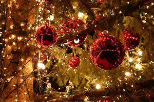 O Natal é uma porta que se abre para novas esperanças que vão dando a vida um tom sublime de alegria e felicidade!