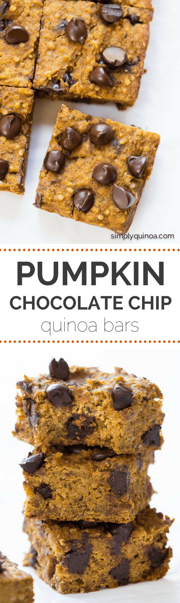 AMAZING pumpkin chocolate chip quinoa bars are packed with protein, naturally sweetened and low in fat! | gluten-free + vegan | simplyquinoa.com