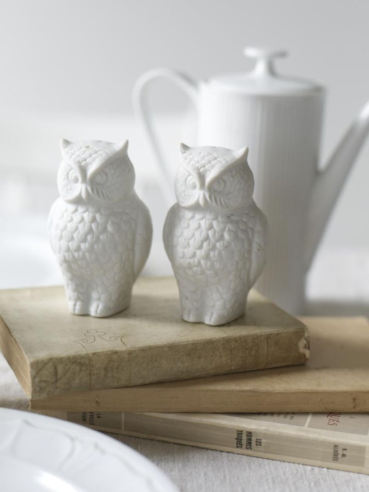 Owl S+P shakers and old vintage books. (Image credit: Alexandra Grablewski via the Sweet Paul Blog-http://bit.ly/bPmRoh)