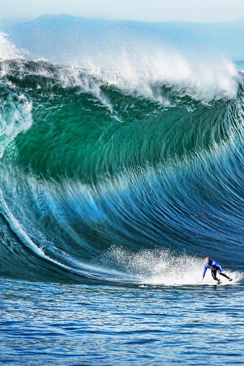 Surfing #surfcitybeachhouserealty #surfcitybeachhouse