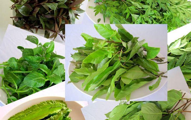 Вьетнамская и азиатская зелень как ее есть Вьетнамская кухня