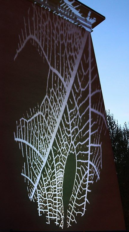 #NaturaLED in #venturaLambrate Leaves on the wall scene2