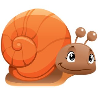 Snails - Animals Homepage