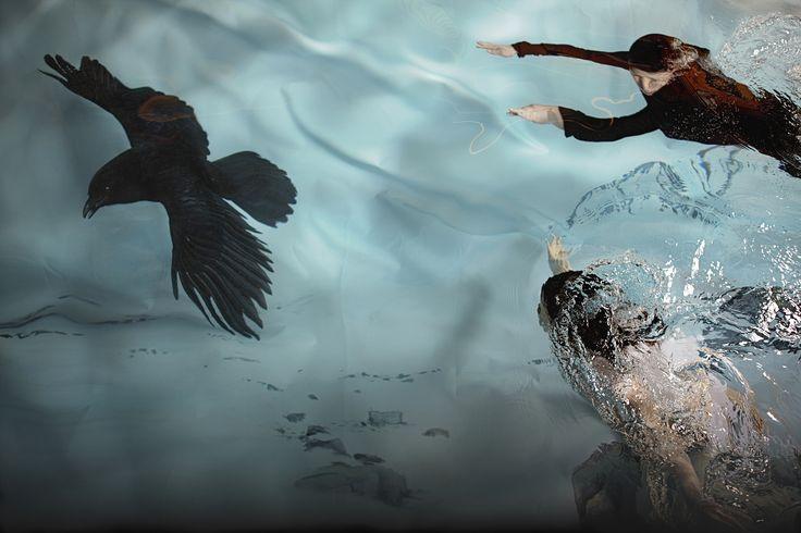 Raven, 2009 #fineart #photography #susannamajuri #underwater